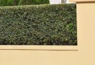 Ardeer Decorative fencing 30